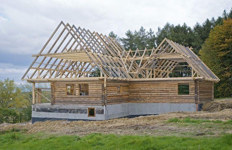 Resort środowiska chce postawić na domy z drewna.