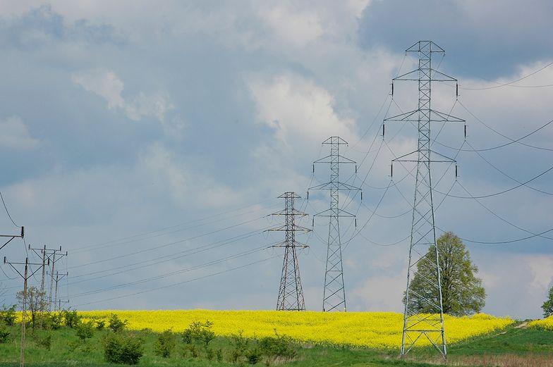"""Polska w obliczu kryzysu energetycznego? """"Potrzeba rynku mocy"""""""