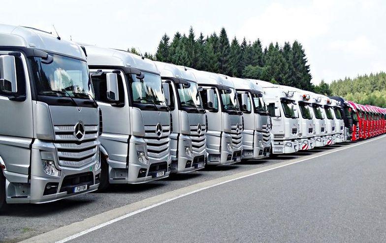 RE wzywa Komisję do opracowania planu awaryjnego dla sektora transportu