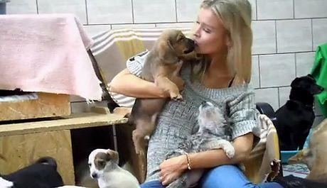 Joanna Krupa w schronisku dla psów