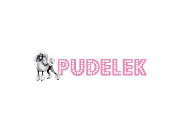 Pudelek przeprasza Rafała Ziemkiewicza i użytkowników za błąd redaktora w nazwie zdjęcia