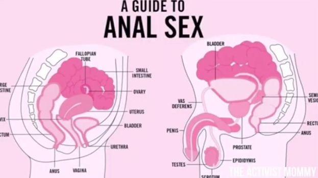 gruba dupa orgia analna