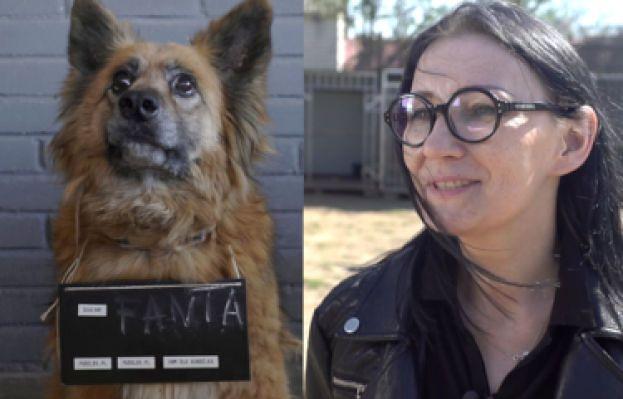 Kundelek Tygodnia: odwiedziliśmy psie gwiazdy czekające na dom (WIDEO)