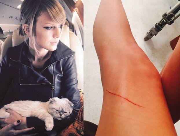 """Swift: """"Mój kot jest mi winny 40 MILIONÓW DOLARÓW!"""""""