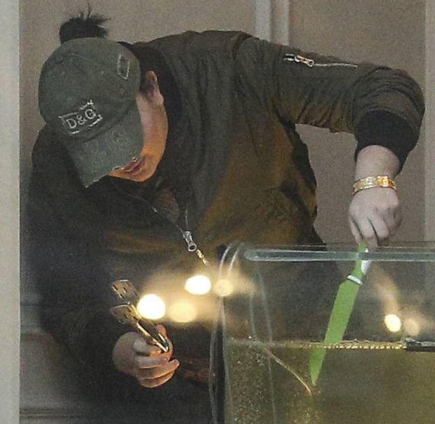 Grycanki mają nowy biznes. Otworzyły... sklep rybny (ZDJĘCIA)