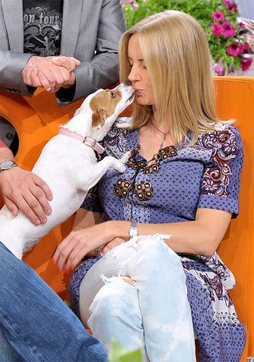 Nie chcą psa Szulim w telewizji!