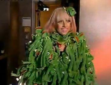 Lady GaGa przebrana za... Kermita!