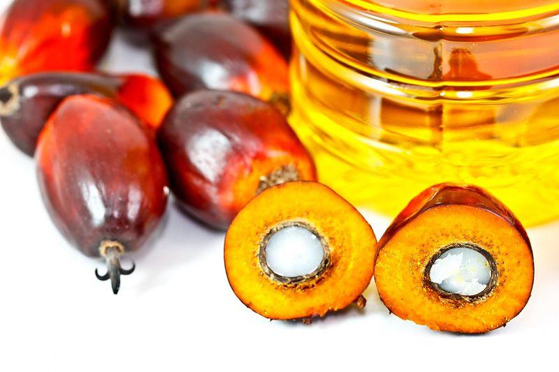Kontrowersyjny Olej Palmowy Produkty Zawierające Olej
