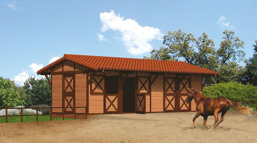 Zdjęcie 1 projektu Murator S13S Stajnia dla 4 koni WAJ3421