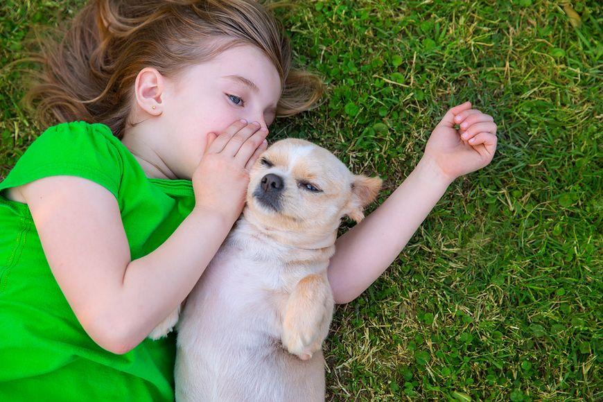 Cierpliwe Psy Najbardziej Cierpliwe Psy Dla Dzieci Wp Parenting