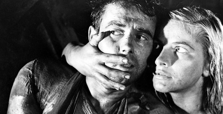 Najsłynniejsze polskie filmy docenione na świecie