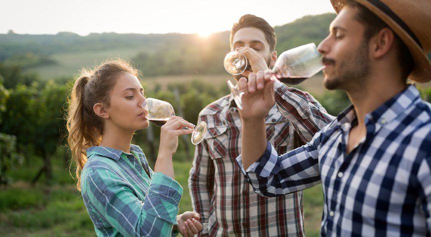 Majówka szlakiem polskiego wina