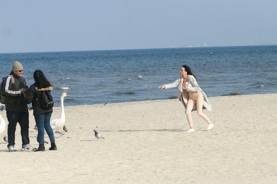 2Karmiła ptaki