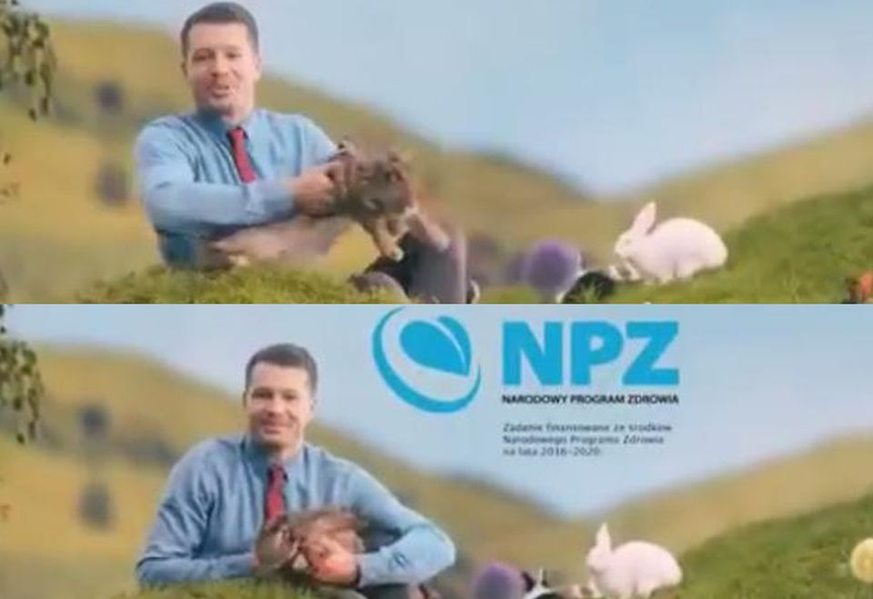 2Króliki w kampanii
