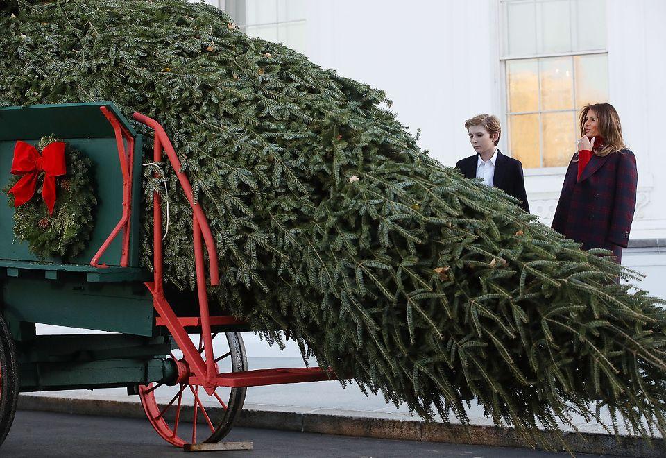 """2Trumpowie nadzorują dostawę bożonarodzeniowego """"drzewka"""""""