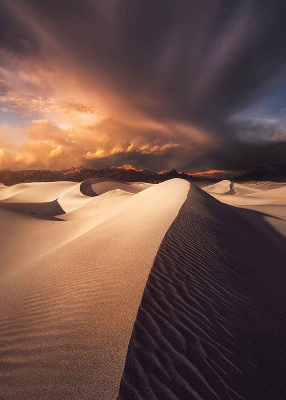 Zwycięzcą w kategorii dorosłych został Ted Gore, który sfotografował wydmy w Parku Narodowym Death Valley w Kalifornii. W nagrodę otrzyma 5000 dolarów oraz publikację w magazynach USA Today i Popphoto.com.