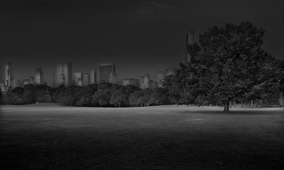 """Fotograf rozpoczął realizację projektu """"Deep In a Dream"""" w 2009 roku. Długie nocne spacery były jego sposobem na poradzenie sobie z nieustanną bezsennością. Długotrwałe obserwacje i rozmyślania sprawiły, że autor czuł jakby te alejki mówiły do niego, wzywały go."""