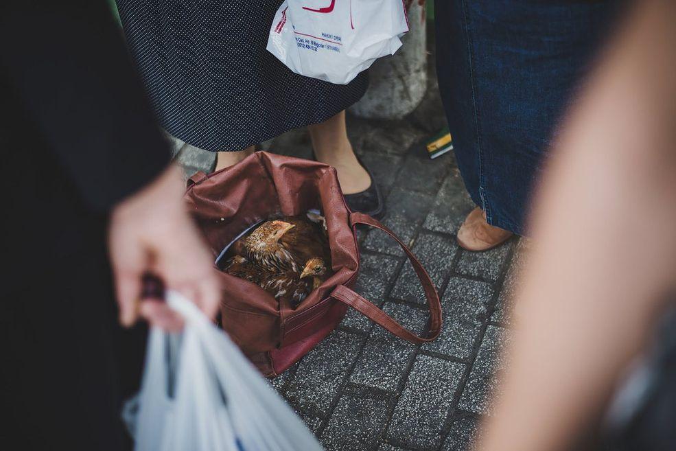 """Kim jest """"Nieśmigielska""""? Pod tym pseudonimem kryje się postać Elżbiety Adamskiej, fotografki z Poznania, którą pasjonuje fotografia podróżnicza i uliczna z dużą dozą ironii. Sama uważa się za amatorkę, która dorywczo zarabia na zdjęciach, sprzedając odbitki lub uprawiając fotografię okolicznościową."""
