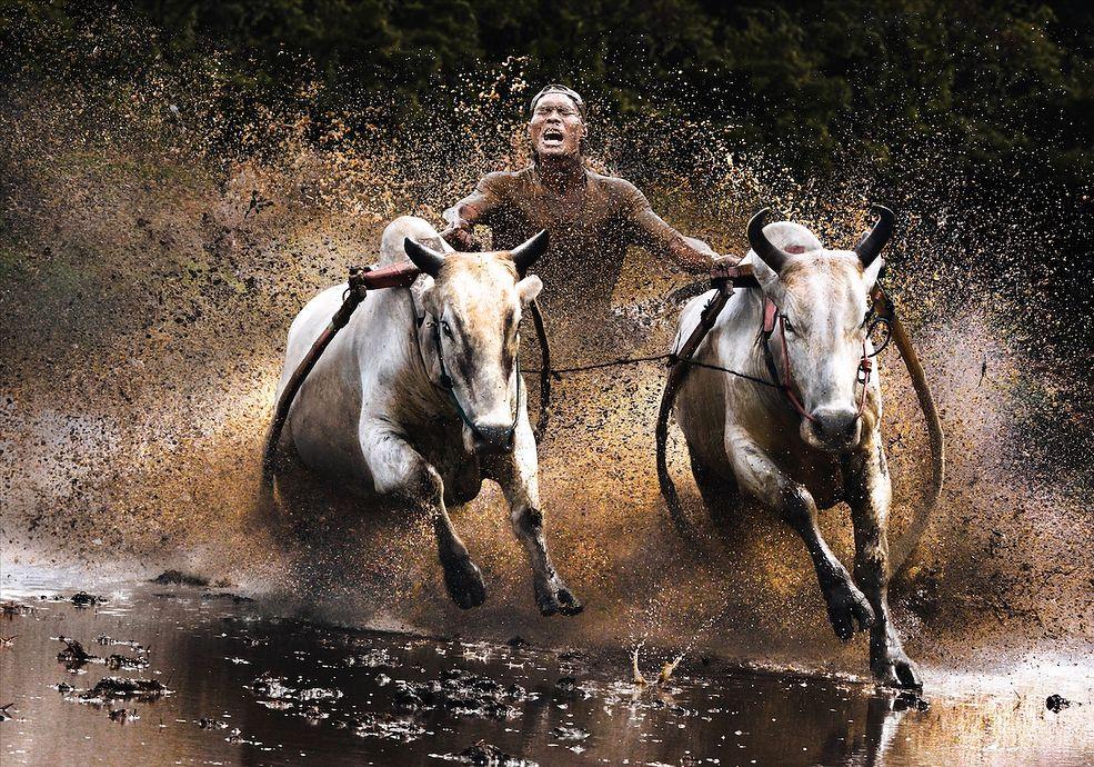 Akcja: Chan Kwok Hung (Hongkong) Courtesy of Sony World Photography Awards 2011