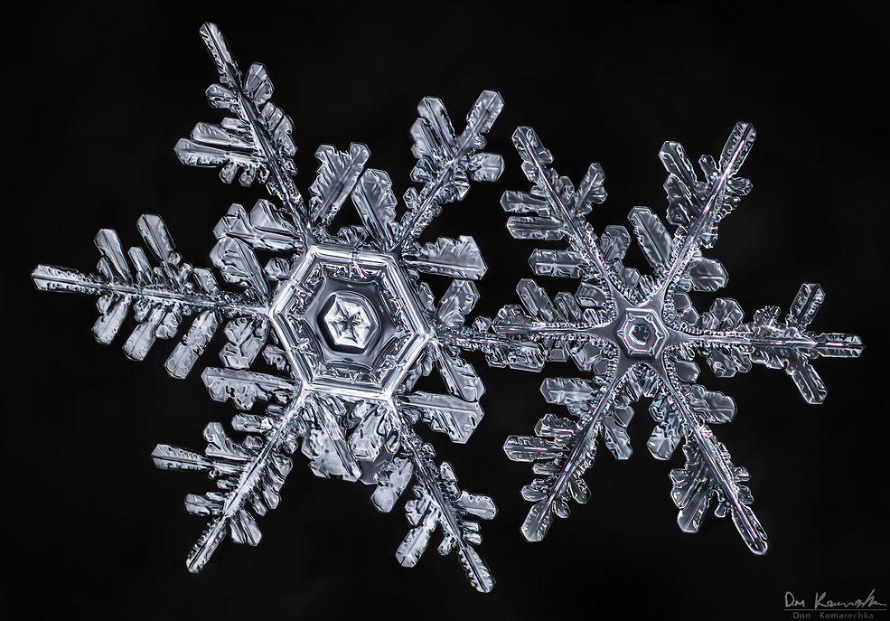Te niewielkie wytwory mrozu były dla autora obiektem rozważań przez długie lata spędzone w zasypanej śniegiem Kanadzie. Kiedy dorastał stracił zainteresowanie tymi drobinkami w zwykłym rozumieniu i zaczął szukać w nich odpowiedzi przez pryzmat swojego aparatu.