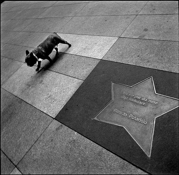 Nie licząc zabaw dziecinnych, Robert Kresa fotografuje nieprzerwanie od 1994 roku. Na pytanie o inspiracje wymienia malarstwo cywilizacji zachodniej, literaturę i filozofię.