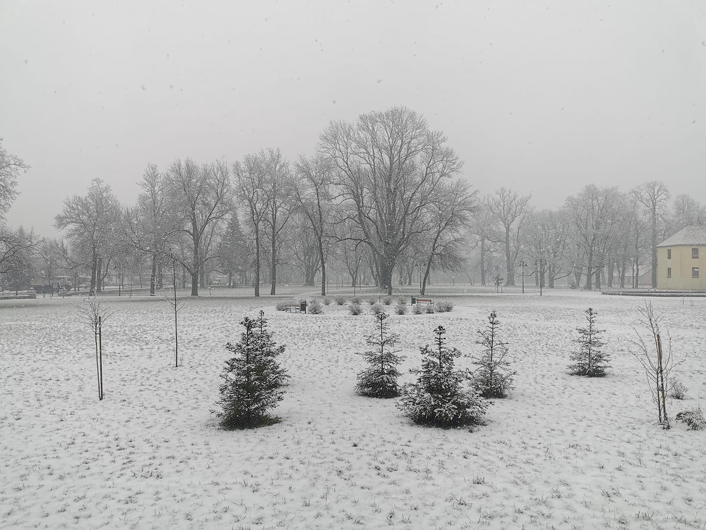 Pogoda. Śnieżyca na Lubelszczyźnie
