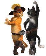 Kot W Butach Zobacz Sześć Fragmentów Filmu Wideo Wp Film