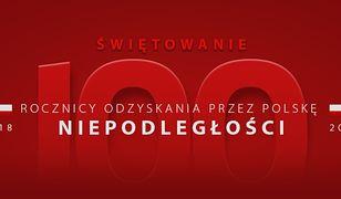 Steam: promocja na polskie gry z okazji stulecia niepodległości