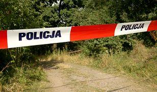 Wypadek awionetki w Małopolsce. Jedna osoba ranna