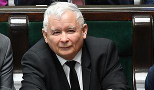 Sondaż. PiS wciąż na czele, tylko trzy partie do europarlamentu