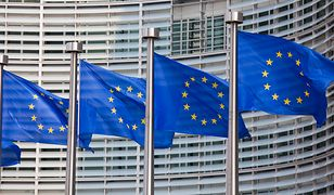 Wybory do Parlamentu Europejskiego 2019. Kiedy i jak głosować w wyborach do Europarlamentu?