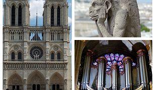 Tego mogliście nie wiedzieć o katedrze Notre-Dame. 8 ciekawostek i ważnych informacji