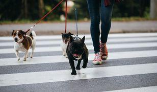 Spacer a odchudzanie - korzyści płynące z chodzenia