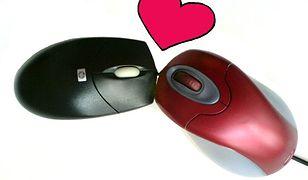 MSN serwisy randkowe zabawny mem randkowy