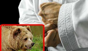 gejowskie historie z niedźwiedziem