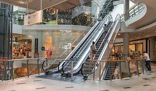 ARC Rynek i Opinia/FOB: 38% Polaków kupuje więcej, niż potrzebuje