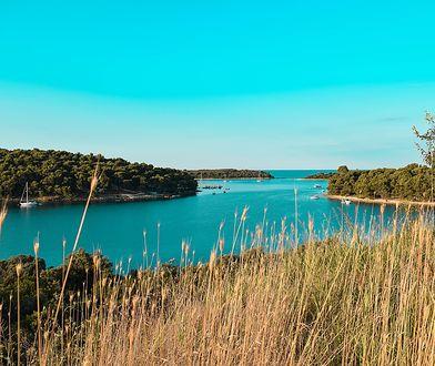 f31b74409 Krajobraz Istrii na północy Chorwacji zachwyca zielenią i błękitem