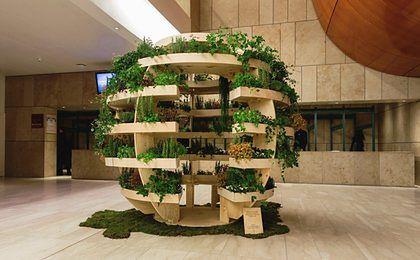 Własny Ogród W Domu Nowy Pomysł Ikea Wp Finanse