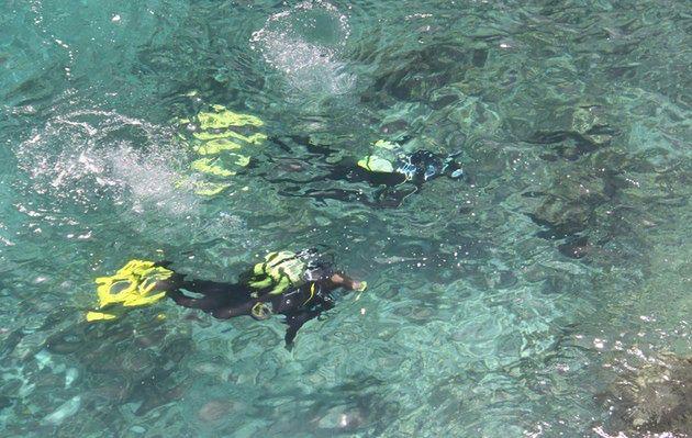 przylądek koralowy