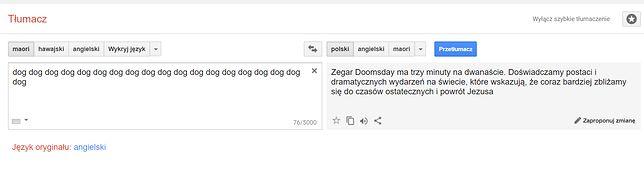 tłumacz gogle gogle