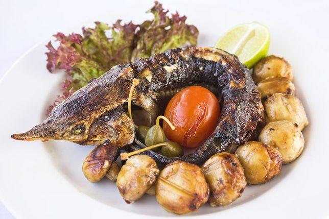 Jesiotr Zapomniana Ryba Wp Kuchnia
