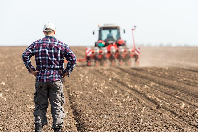 Rolnicy od nowego roku będą mogli oznaczać swoje produkty jako wolne od GMO