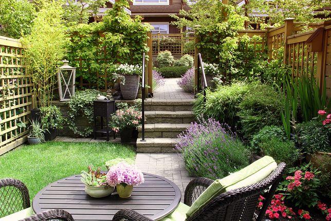 Ogród Na Długiej Wąskiej Działce Jak Go Urządzić Wp Dom
