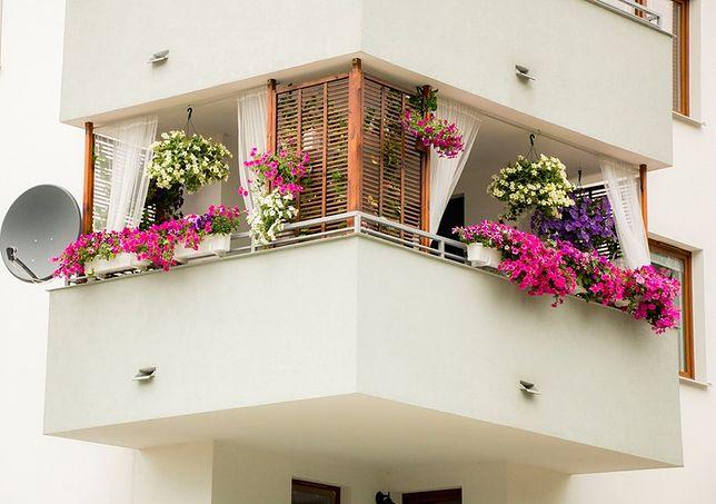 Taras Balkon Czy Ogródek Które Rozwiązanie Wybrać Planując Zakup