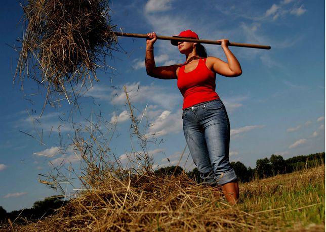 69272c140 Bezwzględne zjawisko na polskiej wsi. Dzieci rolników walczą z rodzicami o  ziemię