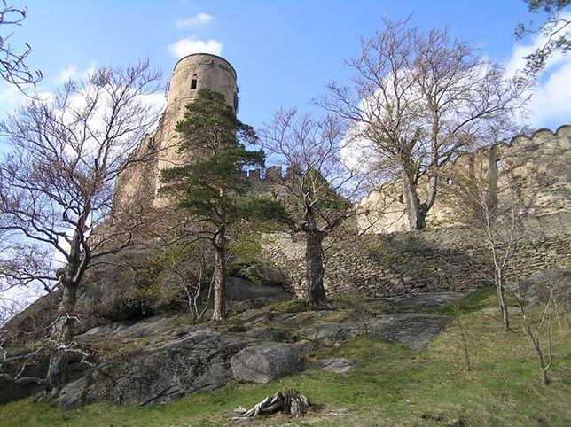 Znalezione obrazy dla zapytania zamek chojnik