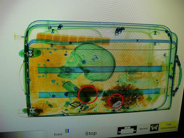 7347546e788b8 Ludzka czaszka w bagażu. Kobieta zatrzymana na lotnisku w Szczecinie ...
