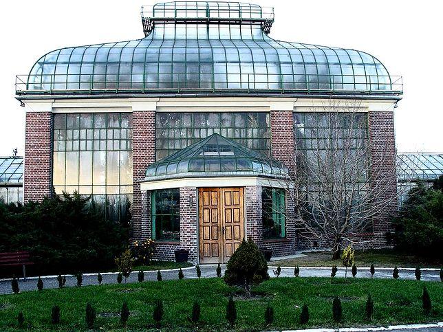 Przeszklony budynek poznańskiej Palmiarni w Parku Wilsona