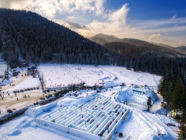 śnieżny Labirynt Znów Stanie W Zakopanem Hit Wśród Zimowych