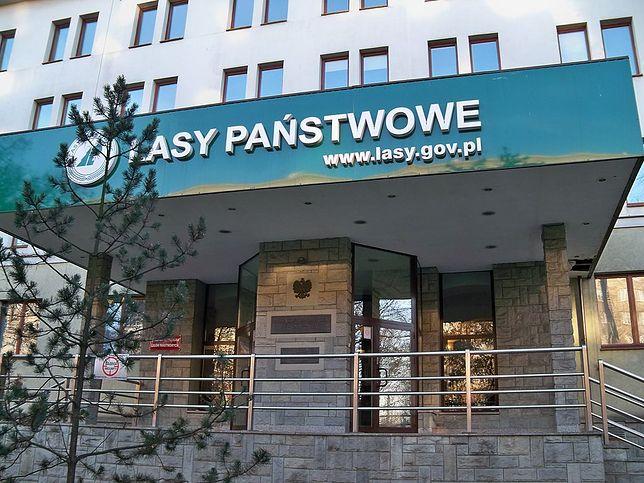"""Państwowe Gospodarstwo Leśne """"Lasy Państwowe"""" zarządza zasobami leśnymi w Polsce"""